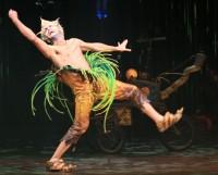 Cirque 4