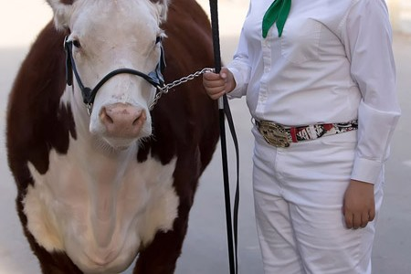 4-H career comes to end