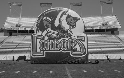 Condors freezing over stadium
