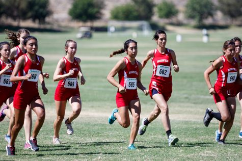 Women's cross country places 24th at state