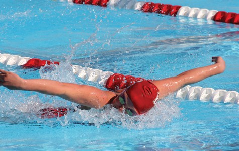 BC swimming wins in dual meet