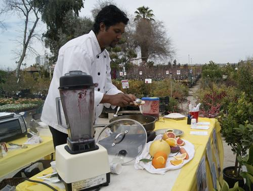 White Forest Nursery has annual citrus tasting