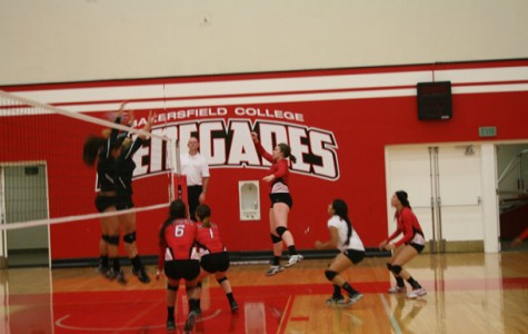 Volleyball team looks to build on tradition