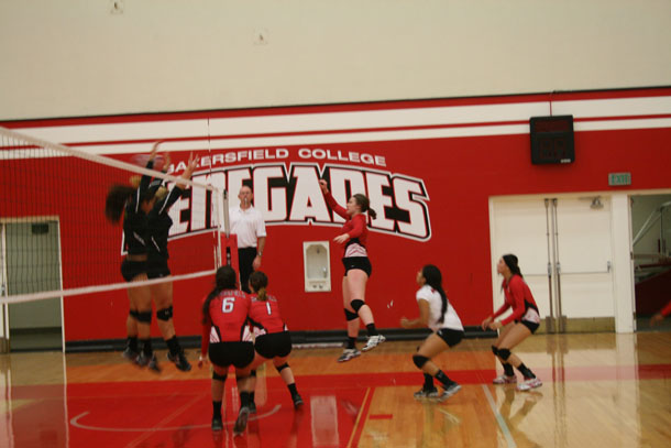 Volleyball+team+looks+to+build+on+tradition