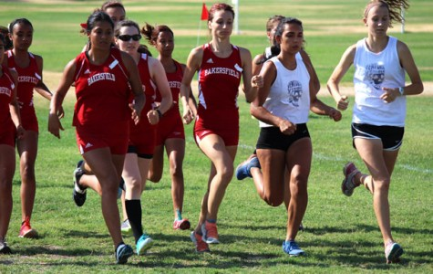 Cross country does well at home meet