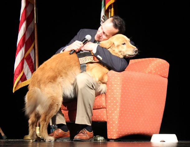 Service dogs providing service for war veterans