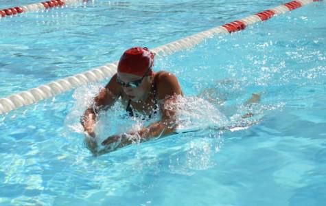 Zimmerman sees success at state swim meet