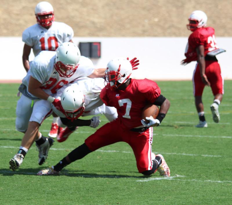 Breaking down the 2015 Renegades football season