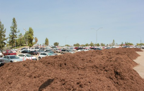 Mulch has been an issue