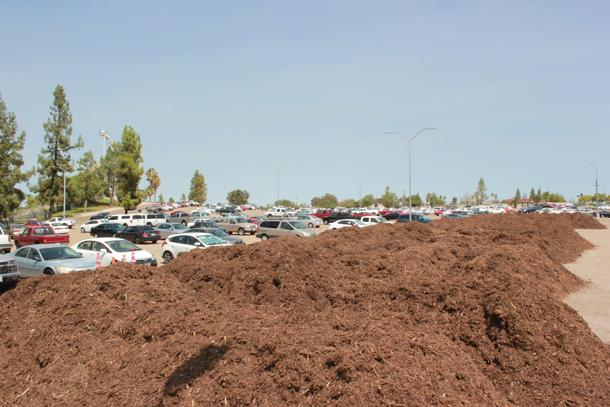 Parking Lot Mulch 1 JET