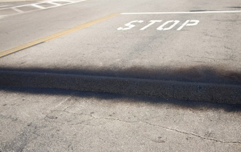 Speed bumps for safety