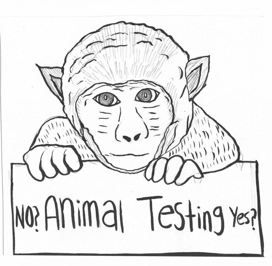 Is animal testing acceptable? (Pro)