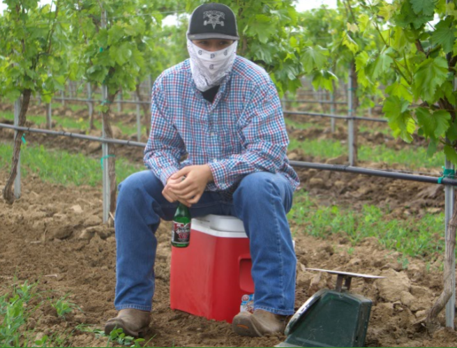 Juan+sits+on+a+cooler+and+poses+for+a+picture+during+his+break+at+the+vineyard+where+he+works.%0A