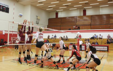 Women's volleyball defeats Glendale 3-0