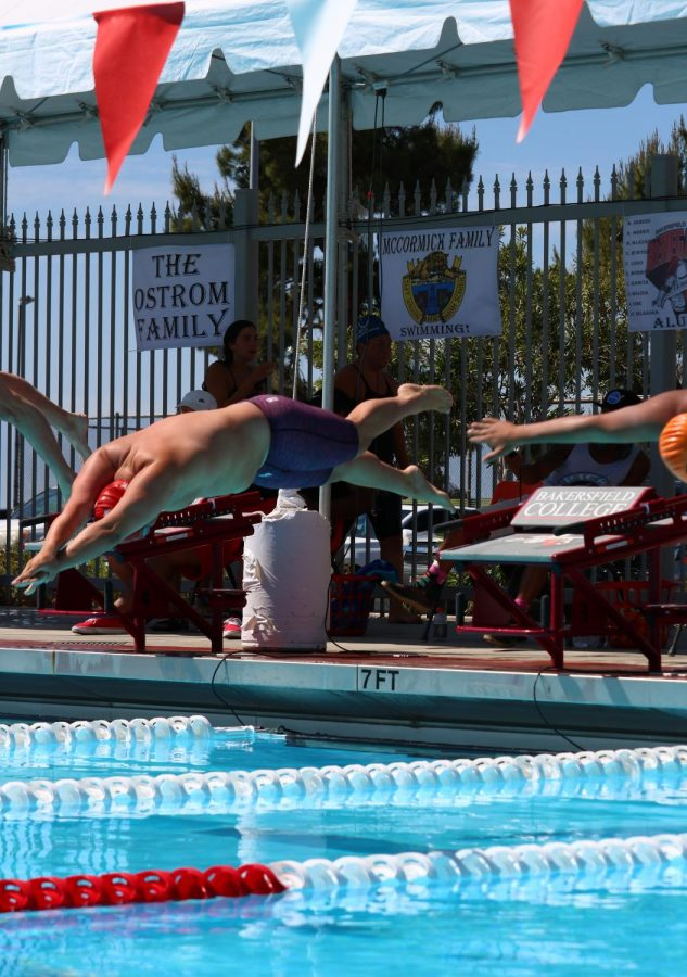 BC's Juan Escalante jumps from the starting platform into the pool on the final day of the three day meet.