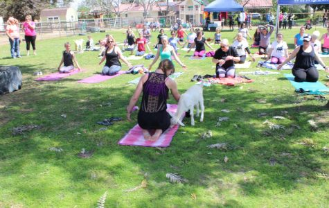 Rochelle Pate, the yoga instructor, pets a goat that wandered next to her.