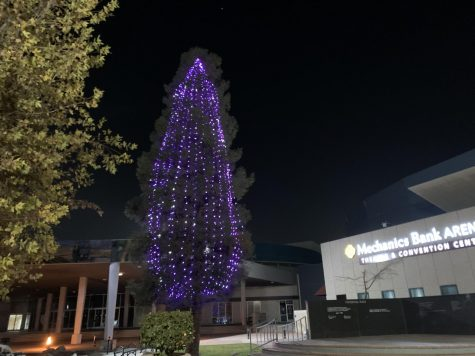 The City of Bakersfield officially had their Christmas tree lighting at Mechanics Bank Arena, December 2020.