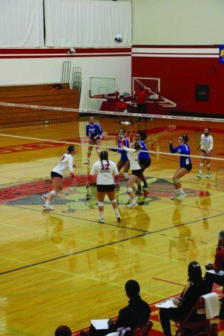 BC Volleyball extends winning streak to seven games